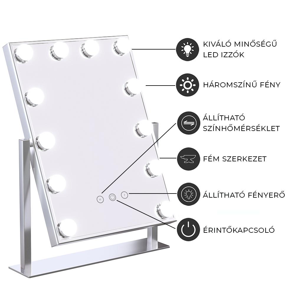 Oglinda Hollywood (HW-DC117-1-ROSEG) 12x3W LED,pentru machiaj